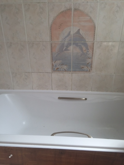 Bathroom - before (1)